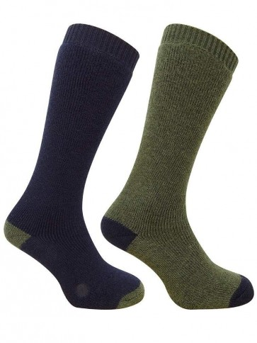 Long Welly Sock (Twin Pack) Green/Navy