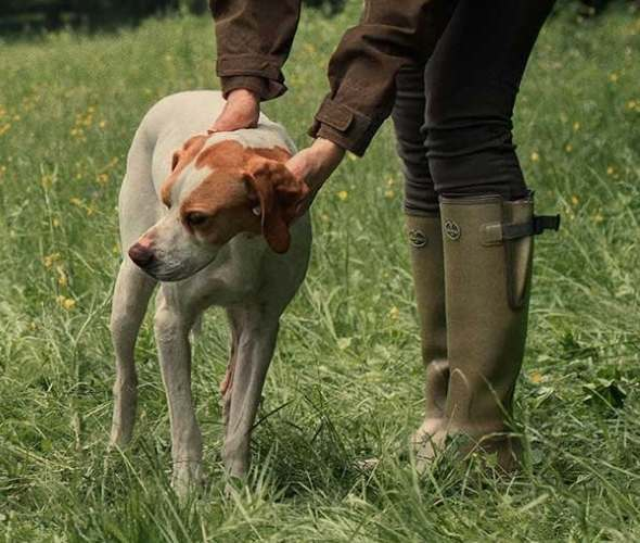 Best Wellies for dog walking