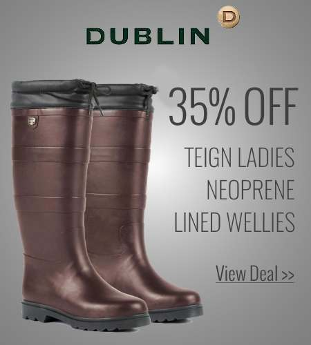 Save on Dublin Teign Wellies